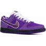 Nike SB Dunk Low Purple (фиолетовые с белым)